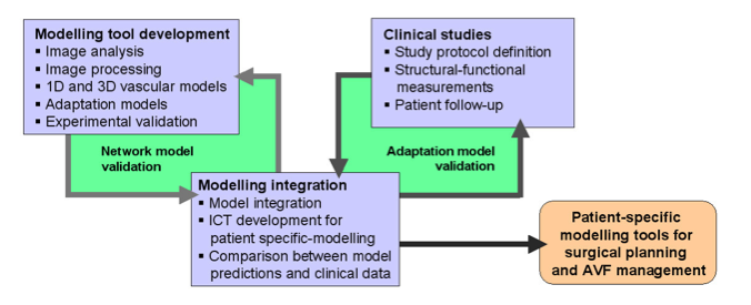 Schematic representation of the process of modelling tool development and calibration with clinical data from prospective observations.