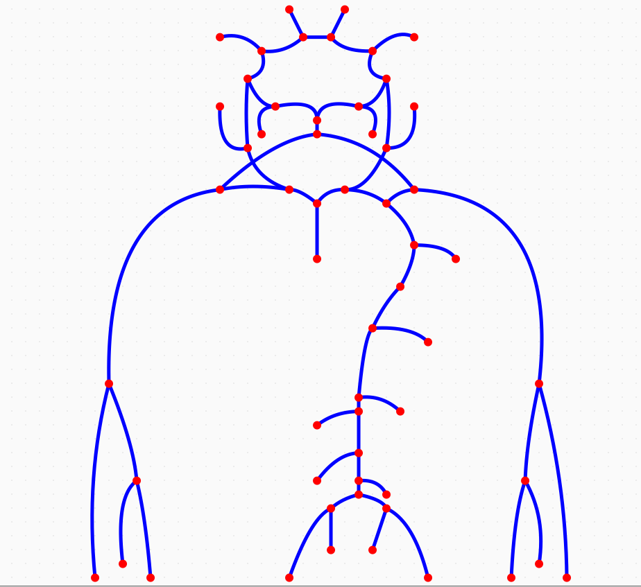 Circle of Willis network model